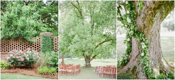 Outdoor Ceremony Under Oak Tree Vinewood Weddings
