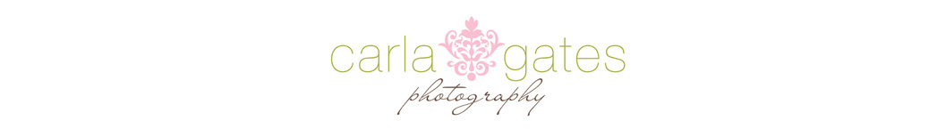 Buckhead Wedding Photography | atlanta Wedding photographer | boudoir photos logo